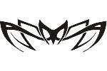 Spider 8