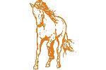 Pferd wild
