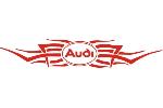 Audi Tribal 2