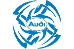 Audi Tribal 3