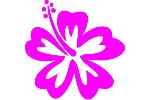 Blume 10